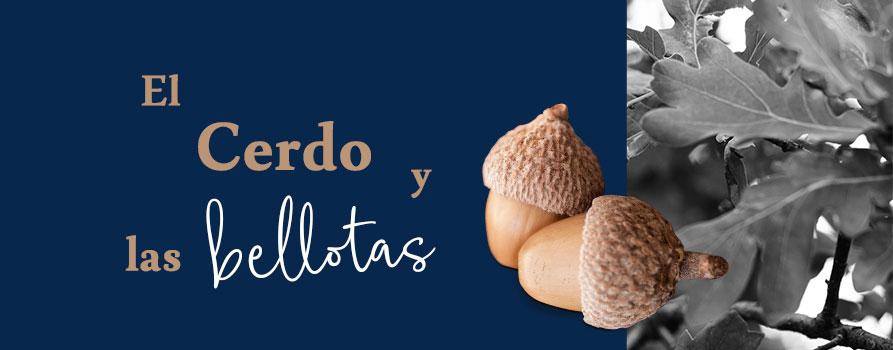 Bellotas-portada-Blog-Ibéricos-Brisa